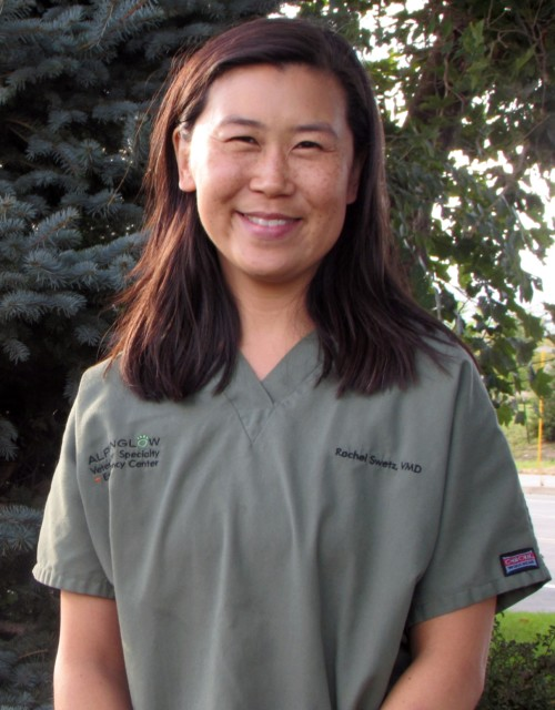 Dr. Rachel Swetz : ECC Veterinarian