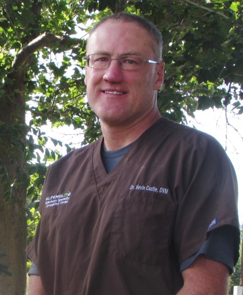 Dr. Kevin Castle : AACCE Emergency Veterinarian, MS (Zoology)