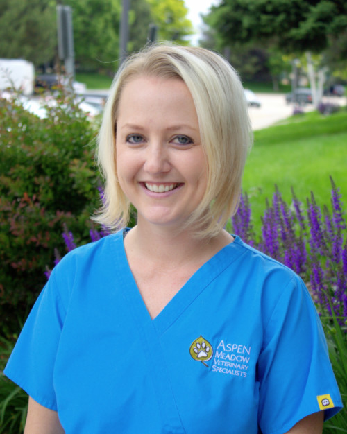 Britta Meyer : Mobile Surgery Manager, BS, AAS, CVT